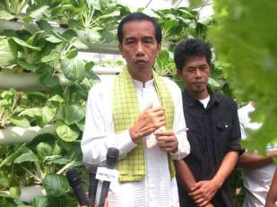 Green House Jokowi