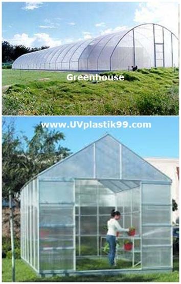 Greenhouse 4a.jpg