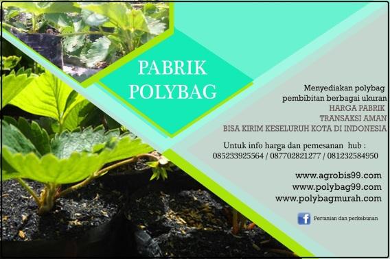 banner-polybag-14