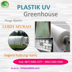 Plastik UV Green House 3